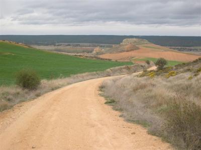 Caminos de ensueño